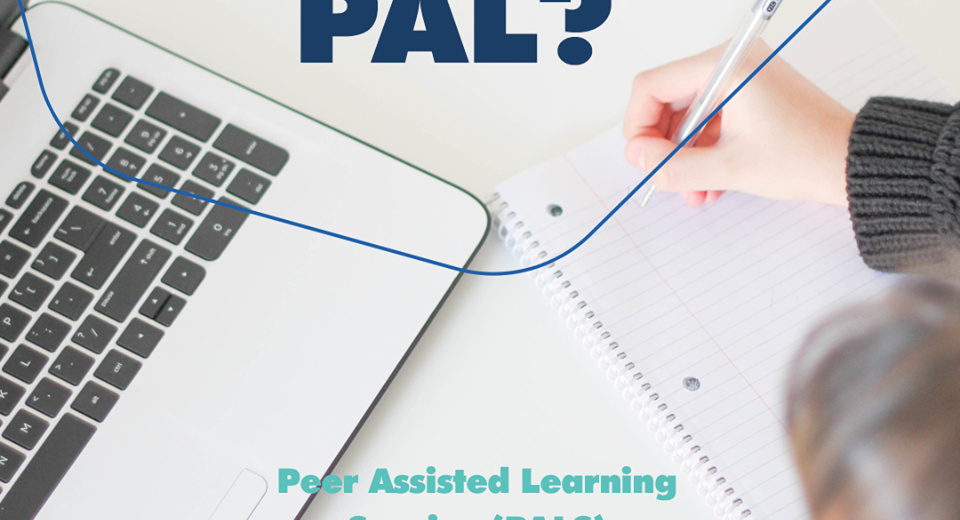 PALS (Peer Assisted Learning Service) Program