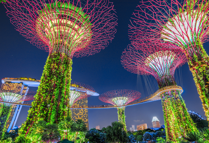 Singapore Field Trip – up, up and away….